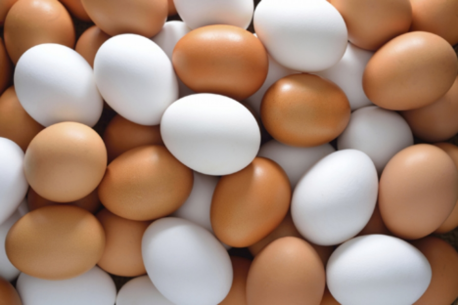 Local egg producers ignored