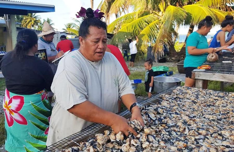 MMR defends paua harvest