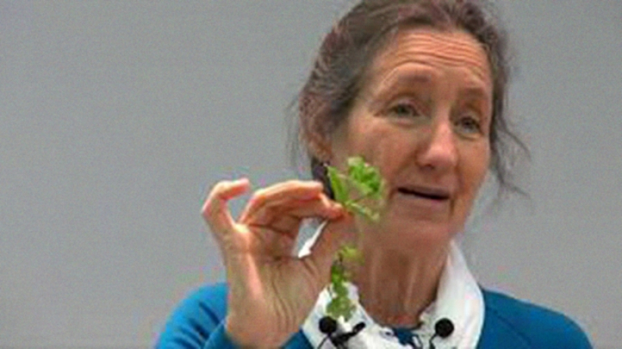 Letters: Naturopath's cancer cure claims
