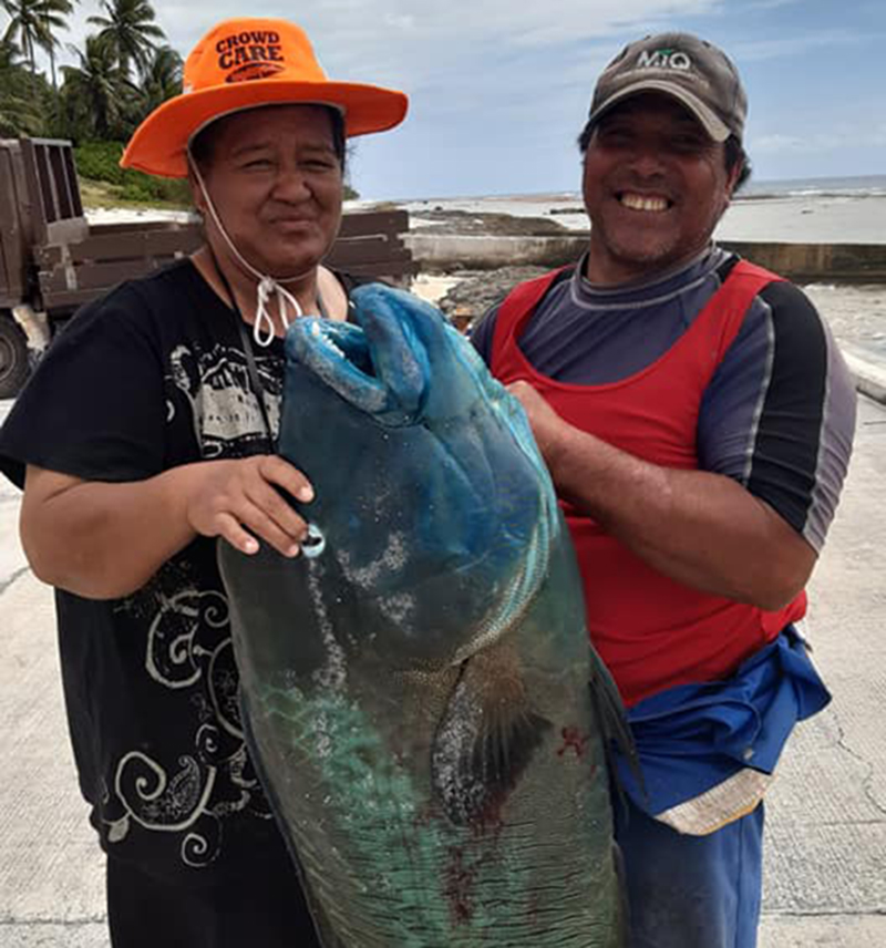 Humpback wrasse helps land top fishing prize
