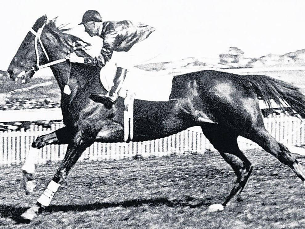 The day 'the Don' and 'Phar Lap' visited Rarotonga
