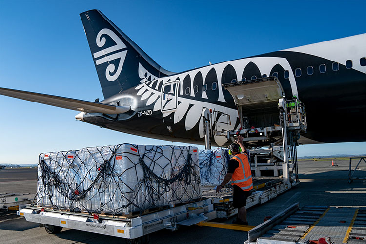 Dreamliner to clear backlog of cargo