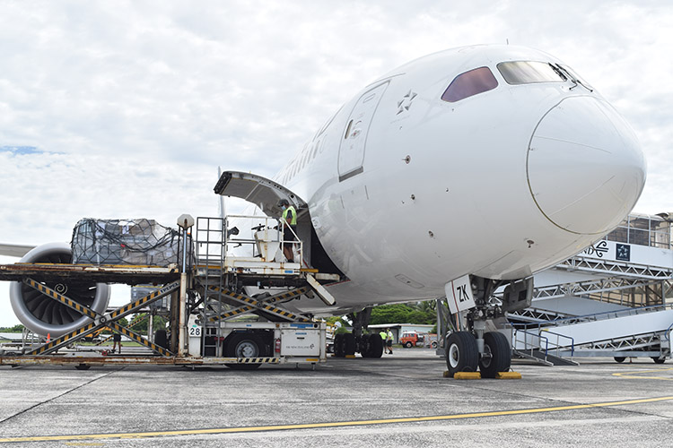 Air freight put on hold, businesses frustrated