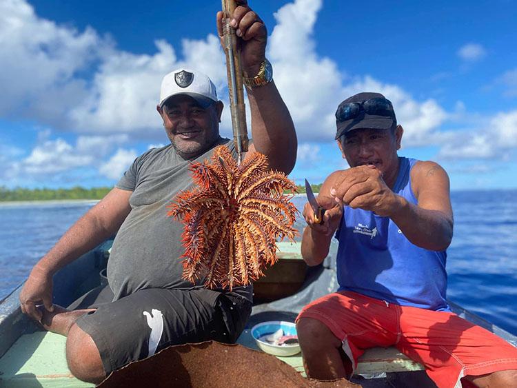 Pukapuka targets crown-of-thorns starfish
