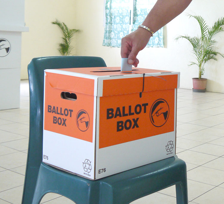 OPINION: MPs suggestion to delay election poorly researched