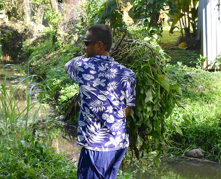 OPINION: Caring for Muri Lagoon means caring for our streams