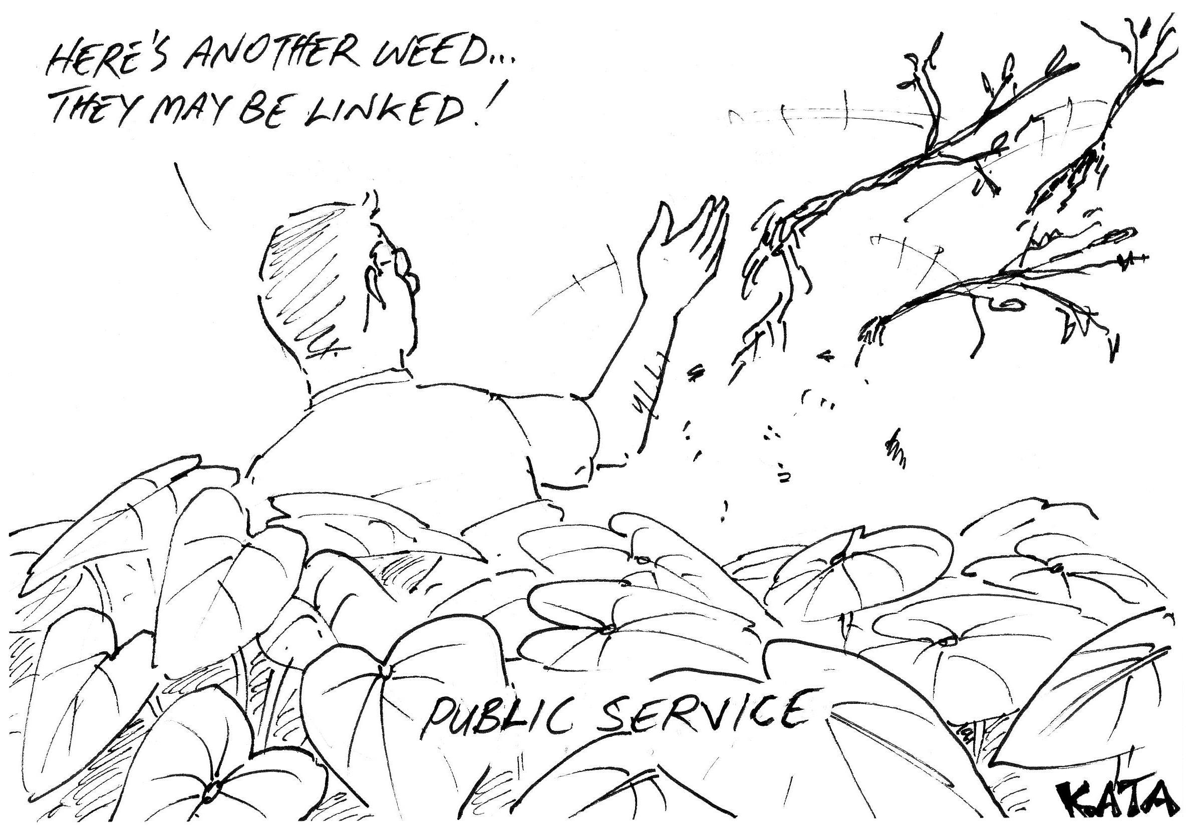 KATA: Public service weeding